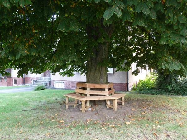Herbstliches Baumbank-Sit-in